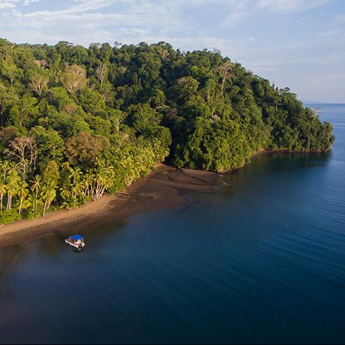 Aerial Cativo Bay 11 784X784