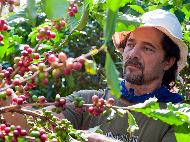 Ramon Picking Coffee Web