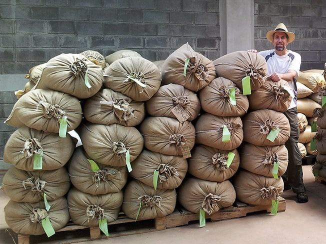 Glenn Quintalesi standing next to bags of coffee beans